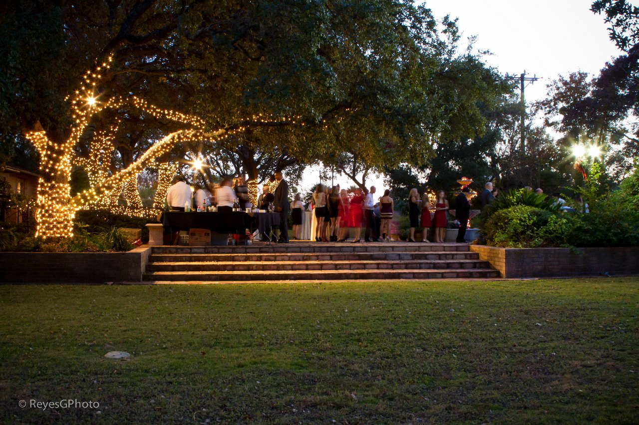 Elevated terrace under a canopy of lighted trees